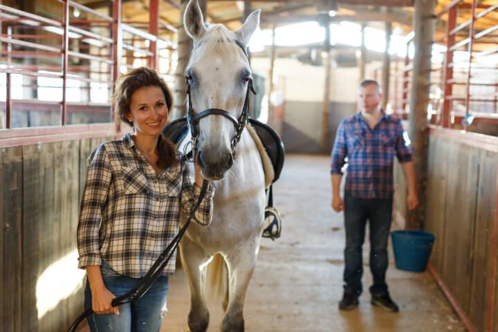 Se reconvertir pour travailler avec les chevaux